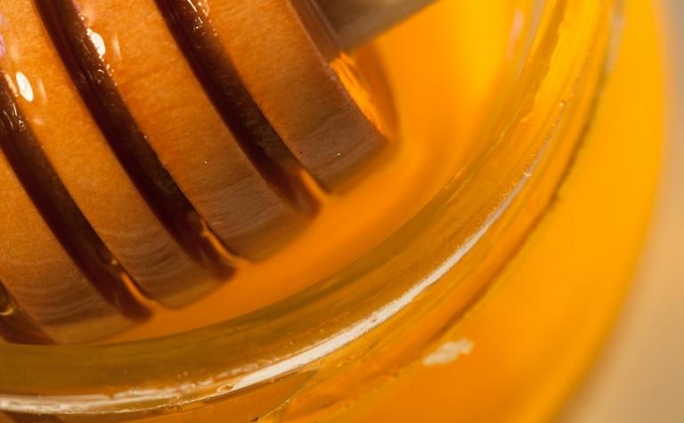 Pleidooi voor Hollandse honing