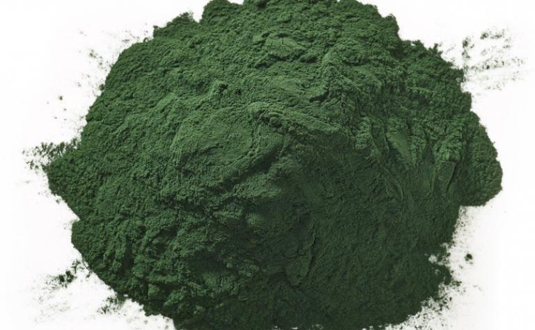Spirulina: een van de oudste levensvormen