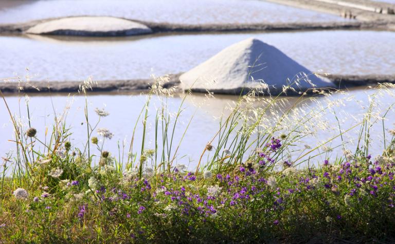 Driemaal zout: Himalaya-zout, Keltisch zeezout en steenzout