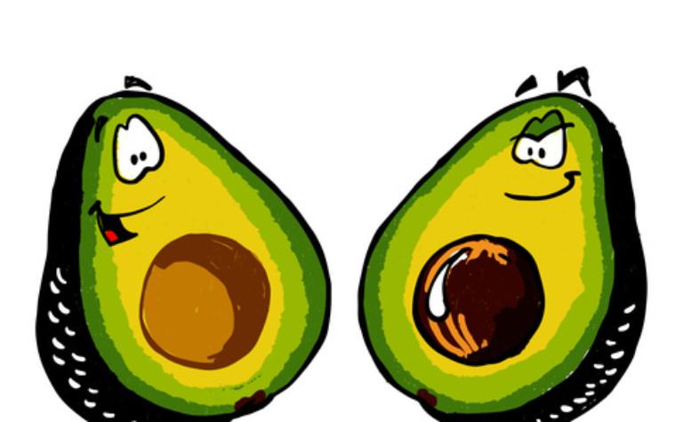 Avocado's zijn dom (en dat is fijn)