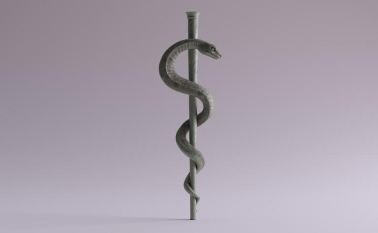 Slangengeneeskunde