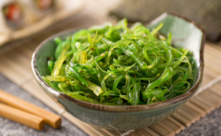 Zeewier en algen; voeding voor onze toekomst