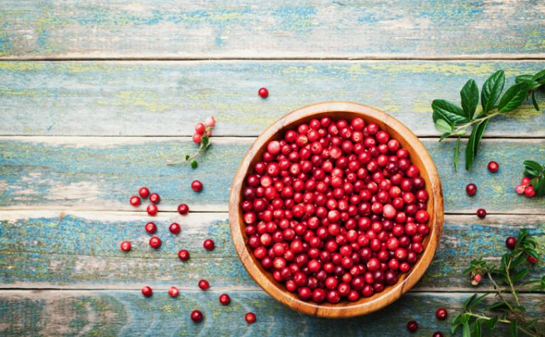 Cranberry – Vaccinium macrocarpon